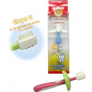 Cepillo de dientes segunda Etapa Pigeon